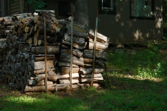Woodpile ready for winter.