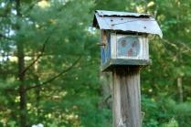 Lady bugs adorn birdhouse..