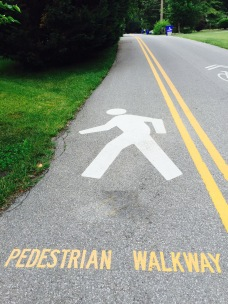 Pedestrians apparently walk across the street.