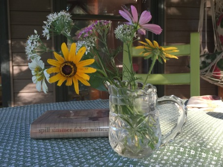 Screen porch, wildflowers, breeze, excellent book by Sara Baume.
