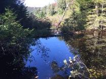 Sapphire blue of Moss Lake cove.