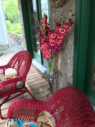 I don't even like gladioli but these are fantastic set between the brilliant wicker chairs and against the folly walls that are shingled with yellow poplar bark.