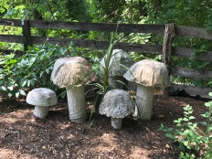 Giant mushrooms.