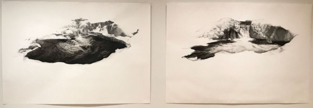 "Genesis Chapman's first place ""Same place two years apart,"" depicts a kettle hole on Bent Mountain."