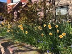 Post sized gardens.